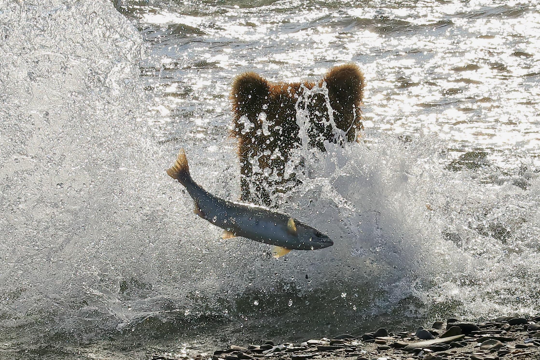 Fishing......